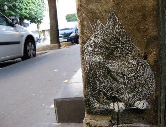 Graffiti C 235