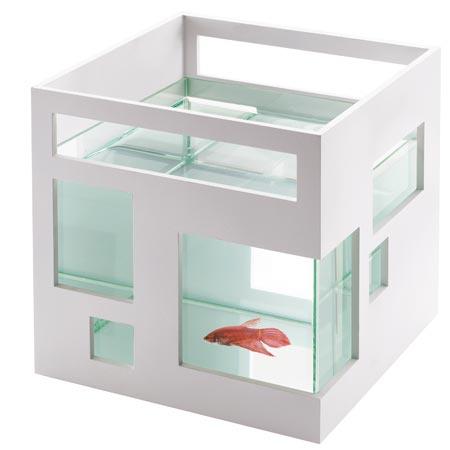 Aquarium design les poissons rouges ont d sormais le for Deco bocal poisson