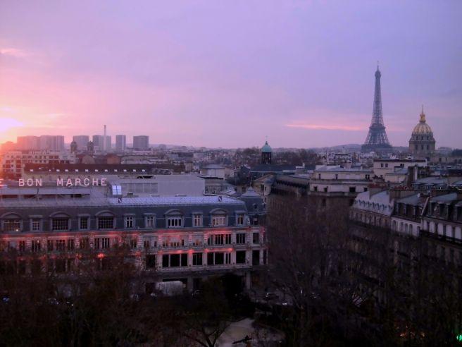 Paris vue du Lutétia