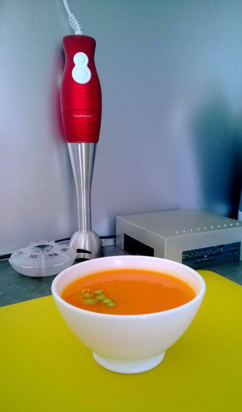mixeur pour les soupes