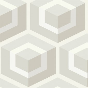 papier-peint-hexagon-cole