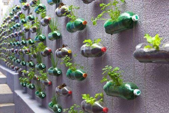 recycler-bouteille-plastique-jardin