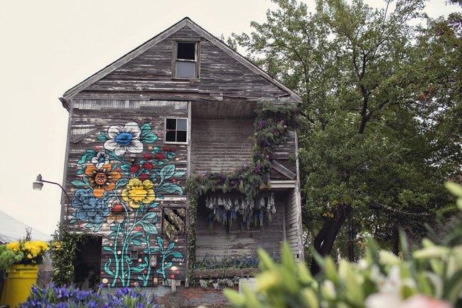 flower-house-fleurs-installations-art-4