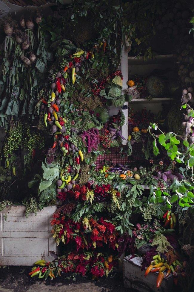 flower-house-fleurs-installations-art-6