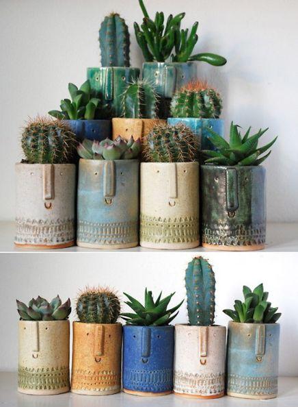 cactus et tendance