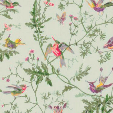 papier-peint-humming-birds