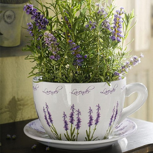 lavender-home-decorating-ideas-1-500x500